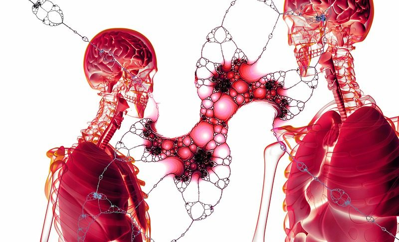 Jak poznat, že cévy v těle nefungují správně