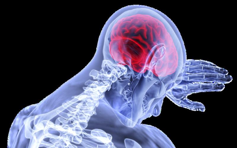 Jakými věcmi nejvíce škodíme mozku?